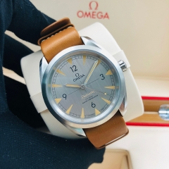OMEGA Seamaster Railmaster 40mm Stainless Steel Grey Dial Automatic 220.12.40.20.06.001